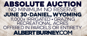 Albert Burney, Inc.