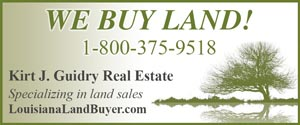 Kirt J Guidry Real Estate