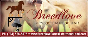 Keller Williams-Breedlove Farms Estates and Land