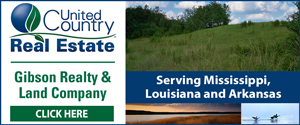Gibson Realty & Land Co.